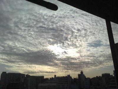 20100209445.jpg